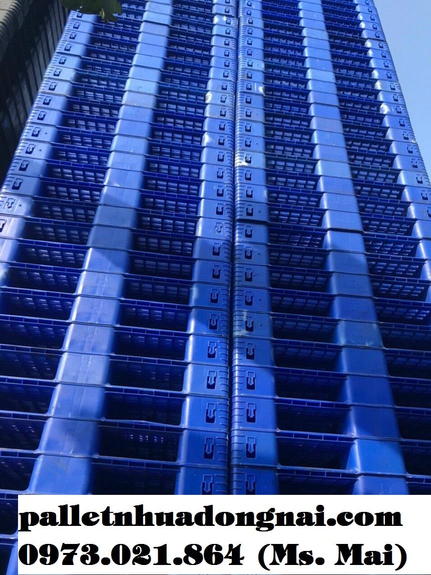 Pallet nhựa Bình Dương giá hót nhất thị trường
