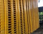 Điều gì khiến cho pallet nhựa ngày càng được sử dụng rộng rãi trong ngành công nghiệp hiện nay