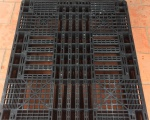 Phân phối pallet nhựa kích thước 1100x1300x120mm với giá rẻ nhất trên thị trường